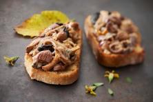 06-01-tartines-aux-champignons-des-bois