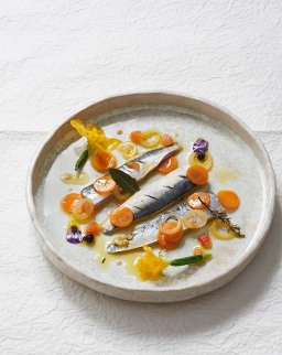 08-sardine-a-lescabeche